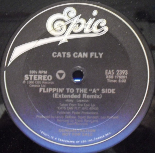 Cats Can Fly - Flippin' To The