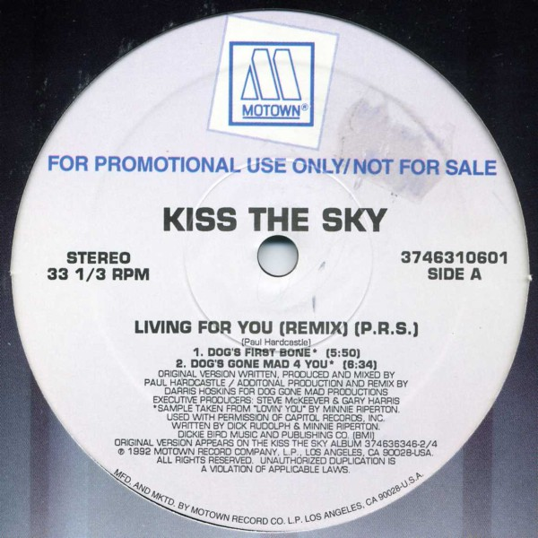 Kiss The Sky - Living For You (Remix) (12